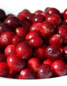 Flavonoids Micronutrients Macronutrients and Longevity